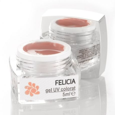 Gel Colorat UV Felicia