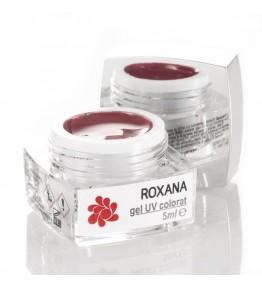Gel colorat Roxana